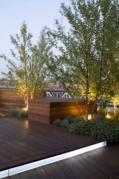 Unfolding Terrace - ландшафтный дизайн на крыше здания в Нью-Йорке