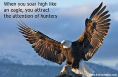 When you soar high like an eagle, you attract the attention of hunters.