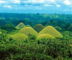 Chocolate Hills | In