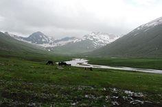 Purbinar Valley #Pakistan