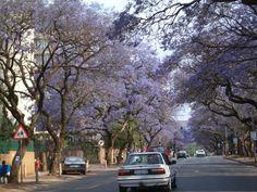 Prétoria - Afrique du Sud