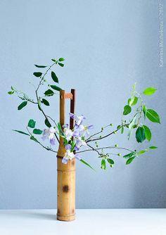 Bonsai, Ikebana Japanese flower arrangement