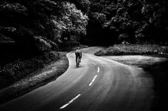Into the Dark by Sebastian Bzinkowski, bike, cycle, cycling, road, bicicleta, bmx, mountain bike