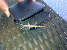 a little stick insect Card Case, Wallet, Garden, Garten, Lawn And Garden, Gardens, Gardening, Outdoor, Purses