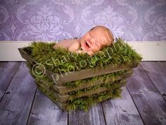 Look who just SPROUTED UP! :()  Deep Green Grass Texture Photography Prop Baby by BabyBirdz, $65.00