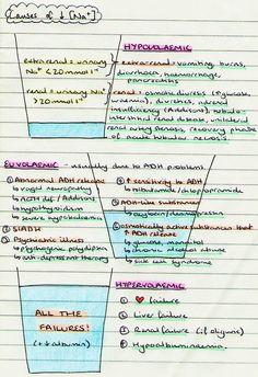 C Fb D D Adc Cd A Bb Sketch Notes Llamas
