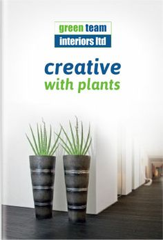 Green Team Interiors, creative with plants..