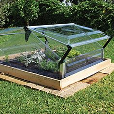 Palram Cold Frame Double 3' x 3' Mini Greenhouse   Overstock.com Shopping - Big Discounts on Palram Greenhouses