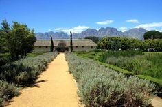 Vergelegen Wine Estate