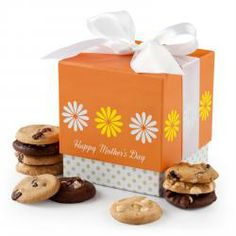 Mothers Day gift mini ribbon box with assorted chocolate chip macadamia Nibbler cookies