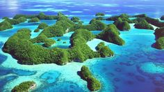 This is in Palau which is near the Philippines.