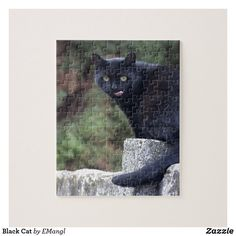 Black Cat Jigsaw Puzzle Cat And Dog Videos, Best Puppies, Dog Anxiety, Yellow Cat, Make Your Own Puzzle, Family Dogs, Shelter Dogs, Training Your Dog, Dog Walking