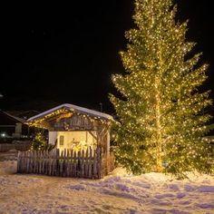 Serfaus-Fiss-Ladis (@serfausfissladis) • Instagram-Fotos und -Videos Skiing, Cabin, House Styles, Videos, Winter, Plants, Instagram, Home Decor, Photos