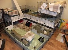 Guinea Pig indoor set up idea. This is really close to what I'm planning on for the piggies *new and improved* cage