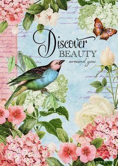 Bird Garden - Discover Art Print