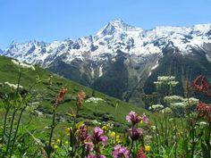 Lotschental, Valais