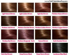 I like the medium golden brown and the one right above it! Hair Color Ideas for Brunettes