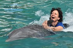 Dolphin Odyssey - I Want To Swim With The Dolphins