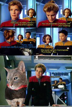 Watch Star Trek, Star Trek Show, Star Trek Meme, Star Trek Characters, Star Trek Voyager, Haha, Sci Fi, Funny Pictures, Tv Shows