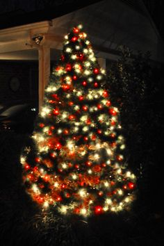 Decorating The Outside Of Our House For Christmas White Tree With Redred
