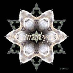 Mandala ''Affe''  kreativesbypetra  #mandala #mandalas #mandalaart #mandalastyle #inspiration #innereruhe #affe #monkey Mandala Art, Petra, Inspiration, Christmas Ornaments, Holiday Decor, Style, Mandalas, Mosaics, Canvas