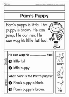Reading Fluency and Comprehension Passages. Ideal for beginning and struggling readers in Kindergarten and First Grade and ESL students. Pam's Puppy.