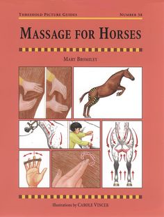 Massage for Horses by Mary Bromily | Quiller Publishing. By leading equine physiotherapist, with her clear and simple explanations, you'll learn how to apply simple massage techniques to enhance your horse's performance, health and well-being.
