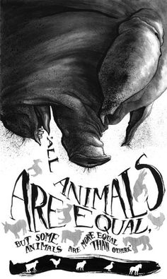 All animals are equal, but some animals are more equal than others. ~ George Orwell, Animal Farm