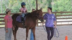HSBC Bank: Stop the eviction of Horse Farm Therapy Center for autistic children. /;(