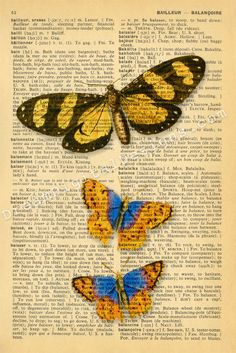 Butterfly print on vintage dictionary page.