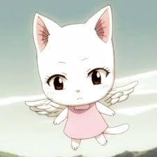 Carla-  is a 6-year-old white-furred Exceed originating from Edolas, and Wendy Marvell's partner. She is capable of using Aera magic,and the ability of precognition allows her to see visions of future locations and events, inheriting her precognitive powers from her mother Chagot; however, Carla is unaware of her family ties. ♥