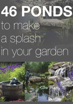 46 ponds to make a splash in your garden