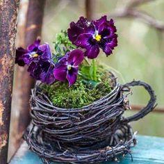 LOVE Flowers - Comunidade - Google+