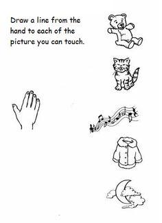 5 senses worksheet for kids (8)  |   Crafts and Worksheets for Preschool,Toddler and Kindergarten