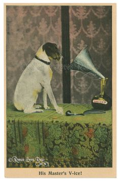 Terrier rat terrier dog watching over his masters whisky carafe looking into the funnel very vintage