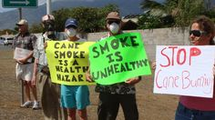 Maui Now : VIDEO: Cane Burning Protesters Don Gas Masks and Oxygen ...