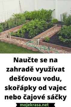 Railroad Tracks, Gardening, Chemistry, Lawn And Garden, Horticulture, Train Tracks