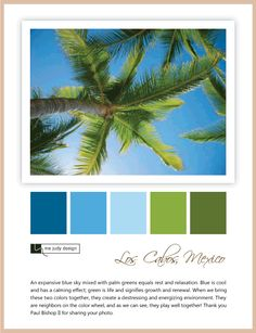 Landscape influence: Looking up to the sky for inspiration. Love the blue and green color palette! Location: Los Cabos, Mexico -mejudydesign.com