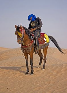 A Desert Rider in Sahara.. Photo Aili Alaiso Finland