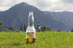 Corona time on the Makai golf course in Princeville, Kauai. Mahalo Frankenhein Photography