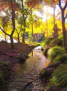 Japanese Garden, Woodward Park, Fresno, CA.-- photo by Karen McClintock.