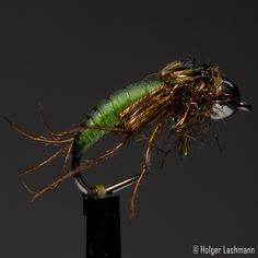 Caddis Pupa with Tungsten Bead