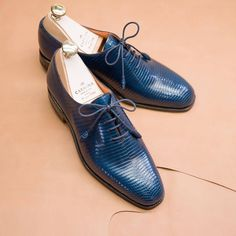 Carmina shoemaker — Introducing new navy lizard wholecuts for women...