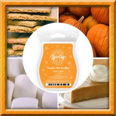 Pumpkin Marshmallow Scentsy Bar is made with sweet marshmallow, fresh baked pumpkin wrapped in a graham cracker crust. www.boltoncandles.scentsy.ca