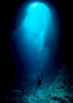 Blue Hole, Palau.  Ok this is terrifying.  But awesome.