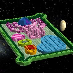 Plant cell model ideas will be an interesting school project in science class if you know how to tackle them – this specific subject is a challenging yet fun. Plant Cell Project, Cell Model Project, Animal Cell Project, Science Fair Projects, School Projects, Projects For Kids, 3d Plant Cell Model, Model Of A Cell, Plant Cell Diagram