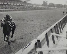 Secretariat signed Belmont Stakes Horse Racing 16X20 Photo B&W - Autographed Sports Photos. Category. Comes with a Certificate of Authenticity from Athlon Sports. Makes a Great Gift! Autographed Sports Photos. Ron Turcotte became internationally famous in 1973 when he rode Secretariat to the first Triple Crown win in 25 years. At the finish, he won by 31 lengths .breaking the margin-of-victory record set by Triple Crown winner Count Fleet in 1943, who won by 25 lengths. and ran the...