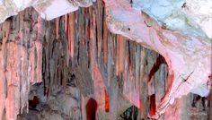 Keloğlan mağarası içi, Dodurga, Denizli, Osman Ünlü Moth, Insects, Cave, Animals, Animales, Animaux, Caves, Animal, Animais