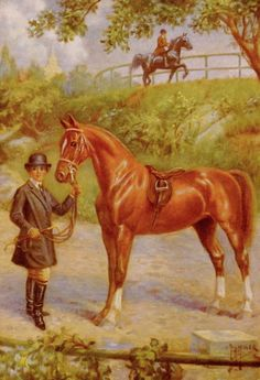 American Saddle Horse Print (Wall Hanging Vintage Home Decor Art) 1920s Antique Equestrian Horse Illustration No. 13