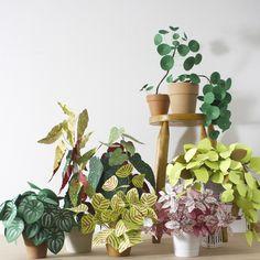 DIY plantas de papel